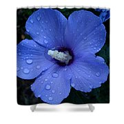 Blue Rose Of Sharon II Shower Curtain