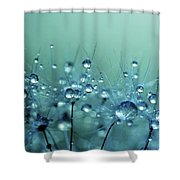 Blue Shower Shower Curtain