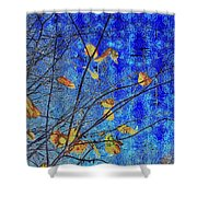 Blue Skies And Last Leaves Of Fall Shower Curtain