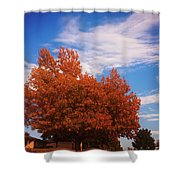 Blue Sky Autumn Shower Curtain