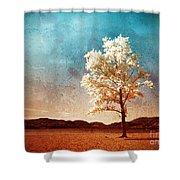 Blue Sky Dreams Shower Curtain