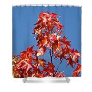 Blue Sky Fall Tree Leaves Landscape Art Prints Baslee Troutman Shower Curtain