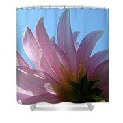 Blue Sky Floral Art Print Pink Dahlia Flower Baslee Troutman Shower Curtain