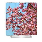 Blue Sky Floral Art Print Pink Dogwood Tree Flowers Baslee Troutman Shower Curtain