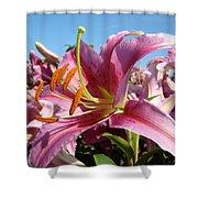 Blue Sky Floral Landscape Pink Lilies Art Prints Canvas Baslee Troutman Shower Curtain