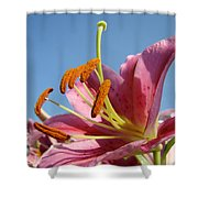 Blue Sky Florals Art Pink Calla Lily Blooming Baslee Troutman Shower Curtain