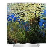 Blue Sky Pond Shower Curtain
