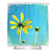 Blue Sky Sunny Daisy Shower Curtain