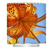 Blue Sky Sunshine Tiger Lily Flowers Giclee Prints Baslee Troutman Shower Curtain