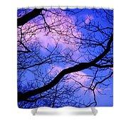 Blue Sky Through The Trees Shower Curtain