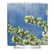 Blue Sky White Clouds Landscape Art White Tree Blossoms Spring Shower Curtain