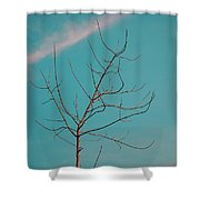 A Lovely Morning At Kerala Shower Curtain