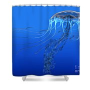Blue Spotted Jellyfish Shower Curtain