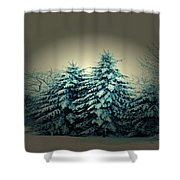 Blue Spruce-maine Evergreens Shower Curtain