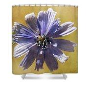 Blue Star #2 Shower Curtain