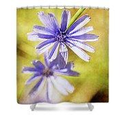 Blue Star #4 Shower Curtain