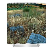 blue stones amongst the olive groves near Iznajar Andalucia Spain Shower Curtain