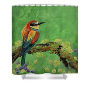 Blue Tailed Bee Eater Shower Curtain