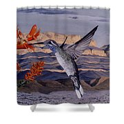 Blue Throated Hummingbird Shower Curtain