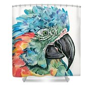 Blue-throated Macaw Shower Curtain