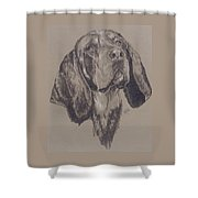 Blue Tick Coonhound Shower Curtain