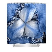 Blue Tiger Iris Shower Curtain