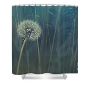 Blue Tinted Shower Curtain by Priska Wettstein