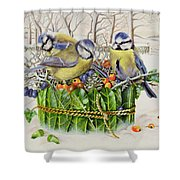 Blue Tits In Leaf Nest Shower Curtain