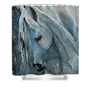Tranquility Shower Curtain by Jani Freimann