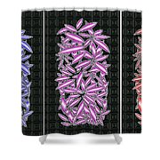 Blue Violet And Red Shower Curtain