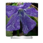 Blue Violet Raindrops Shower Curtain
