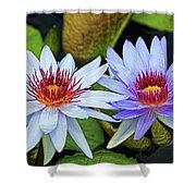 Blue Water Lilies Shower Curtain