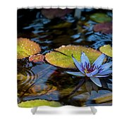 Blue Water Lily Pond Shower Curtain