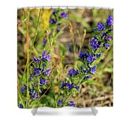Blue Weed Shower Curtain