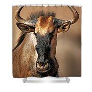 Blue Wildebeest Portrait Shower Curtain