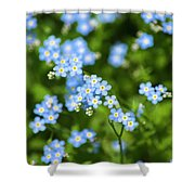 Blue Wildflowers Forget Me Nots Shower Curtain