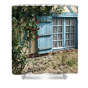 Blue Window Shower Curtain