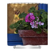 Blue Window With Geraniums Shower Curtain
