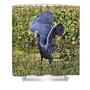 Blue Wings And Green Pond Shower Curtain