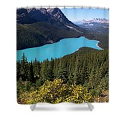 Blue Wolf In The Valley Shower Curtain