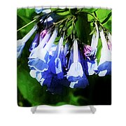 Bluebell 21 Shower Curtain