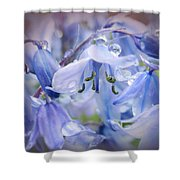 Bluebell Glade Shower Curtain