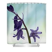 Bluebells 2 Shower Curtain