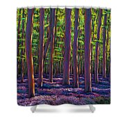 Bluebells And Forest Shower Curtain