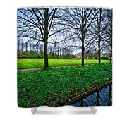 Bluebells In England Shower Curtain