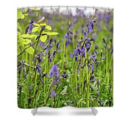 Bluebells In Judy Woods Shower Curtain