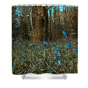 Bluebells In Lismore Forest Shower Curtain