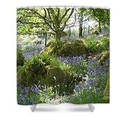 Bluebells On Dartmoor Shower Curtain