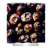 Blueberries And Ladybug Shower Curtain