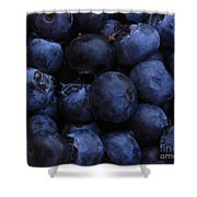 Blueberries Close-up - Horizontal Shower Curtain